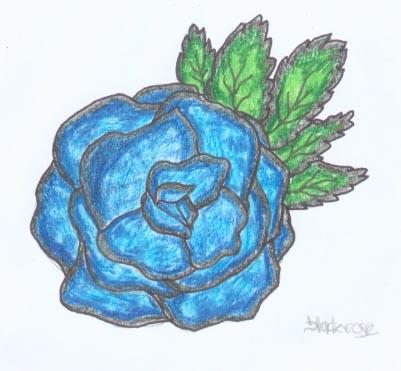 blackrose-1